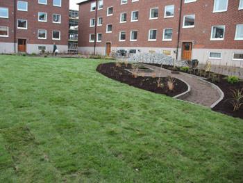 Färdig gräsmatta göteborg